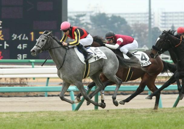 アルーシャ京都牝馬ステークス2020無料予想